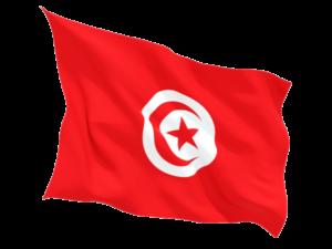 джерба тунис отзывы 2019 цены