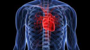 Замена аортального клапана - стоимость операции и последствия