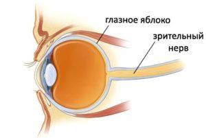 народные методы лечения зрительного нерва термобелье, термобельё